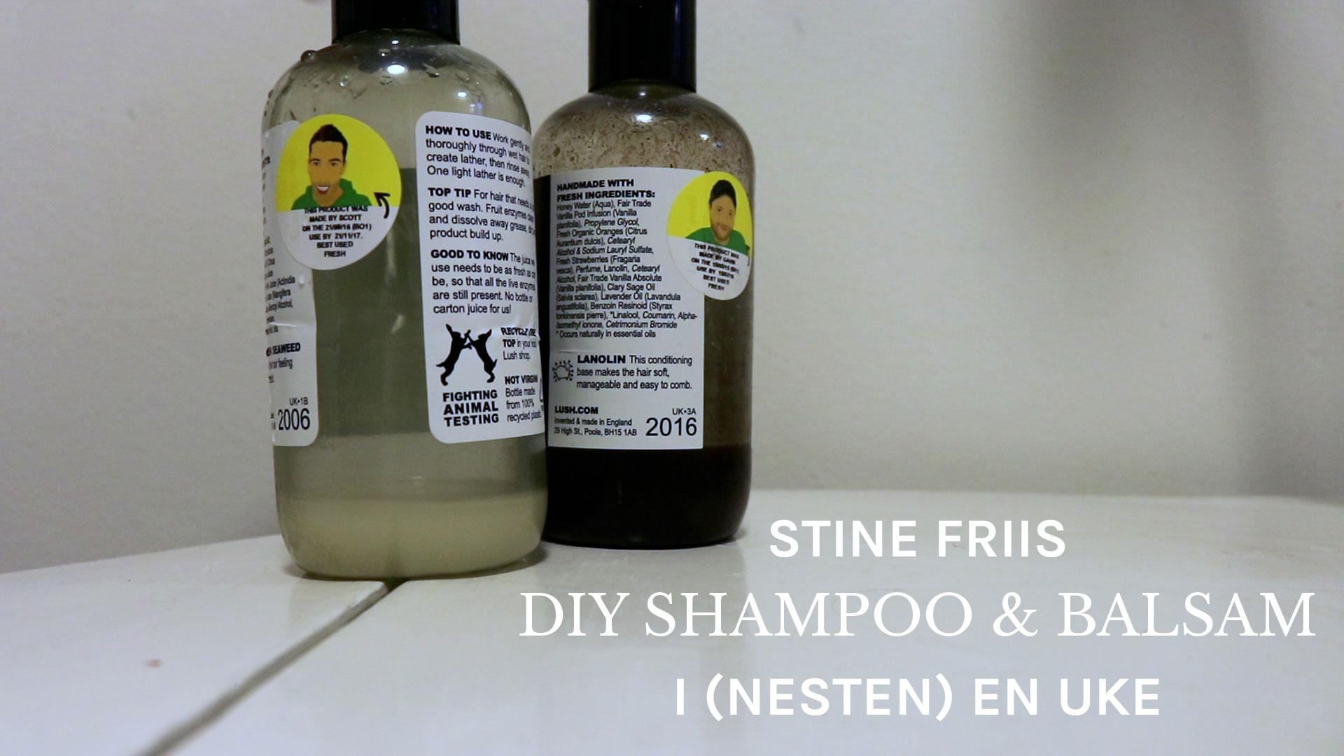 Jeg testet DIY shampoo og balsam i en uke.